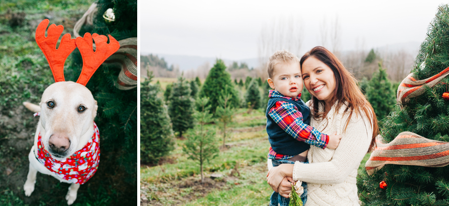 019-fullner-family-christmas-tree-farm-everson-washington-bellingham-family-photographer-katheryn-moran-photography.jpg