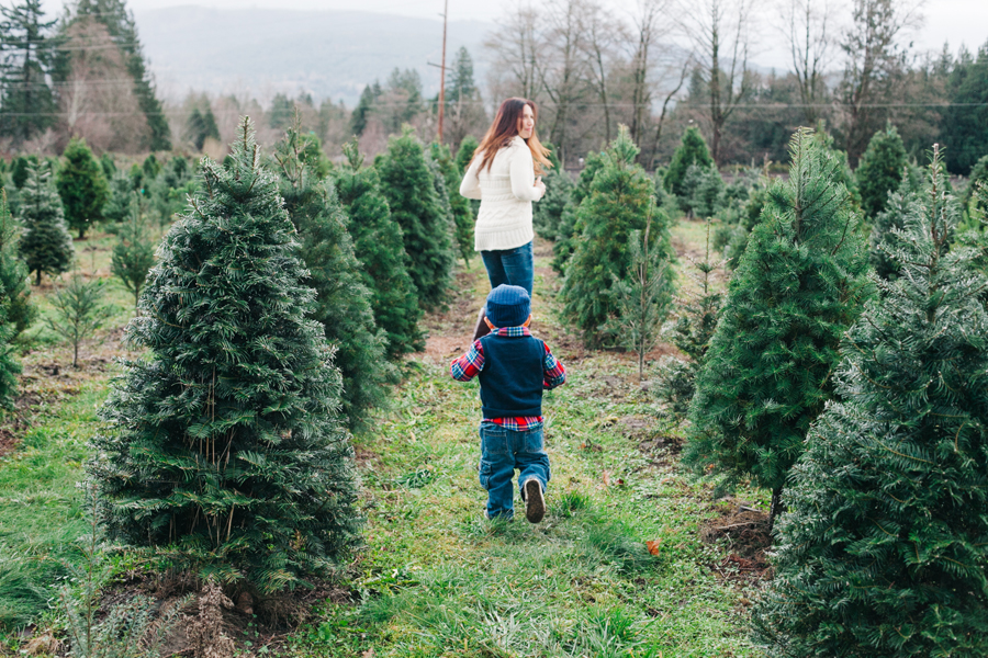 023-fullner-family-christmas-tree-farm-everson-washington-bellingham-family-photographer-katheryn-moran-photography.jpg