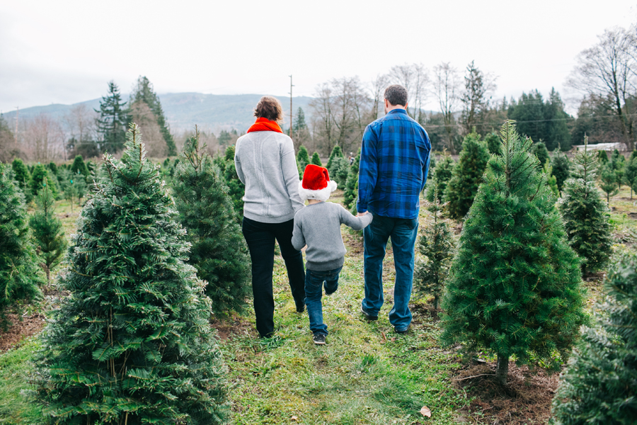 047-fullner-family-christmas-tree-farm-everson-washington-bellingham-family-photographer-katheryn-moran-photography.jpg