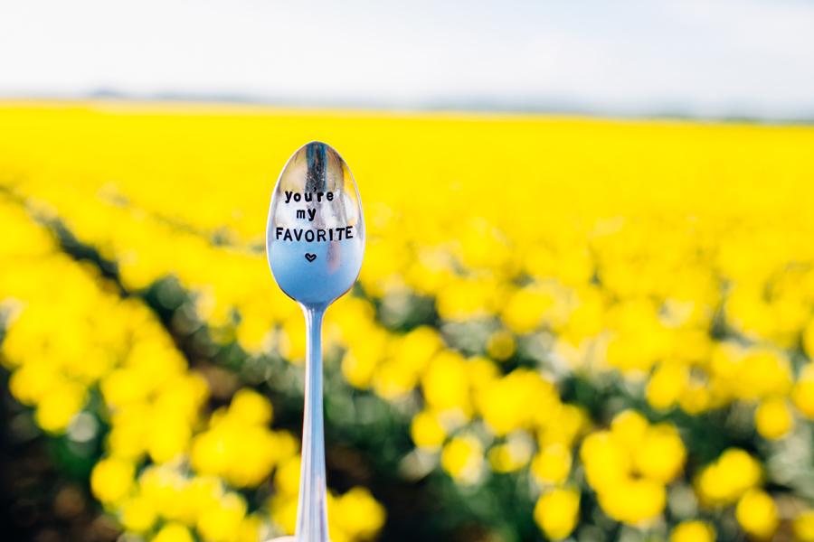 009-skagit-vallery-mount-vernon-washington-daffodils-tulip-festival-katheryn-moran-photography.jpg