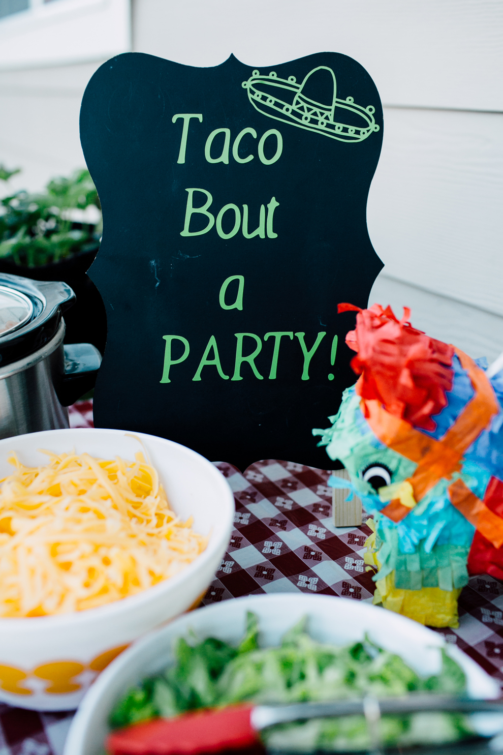 001-cinco-de-mayo-backyard-party-bellingham-taco-bar-katheryn-moran.jpg