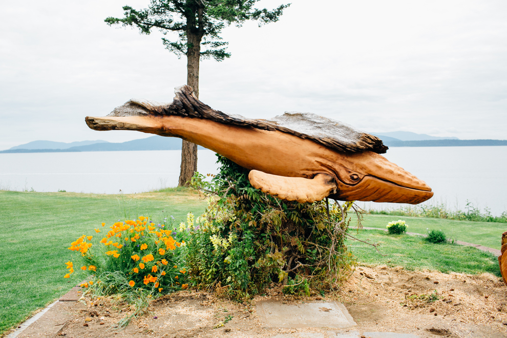 009-jeffro-uitto-knock-on-wood-whale-bellingham-bay-katheryn-moran-photo.jpg