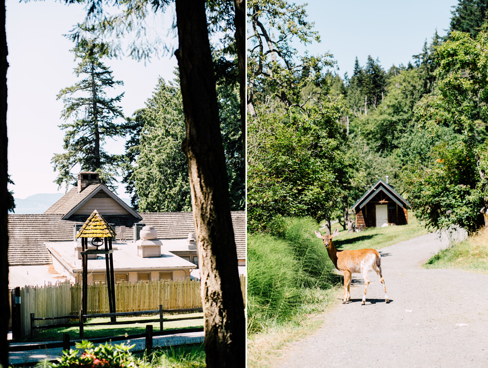 001-orcas-island-engagement-proposal-camp-orkila-katheryn-moran-photography.jpg