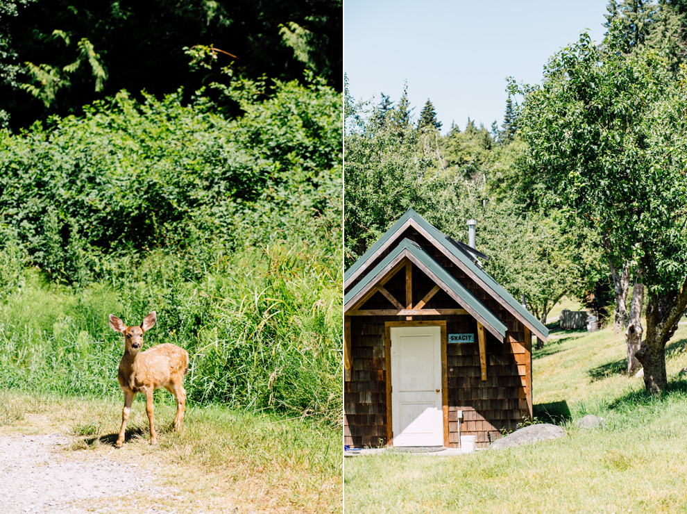 003-orcas-island-engagement-proposal-camp-orkila-katheryn-moran-photography.jpg