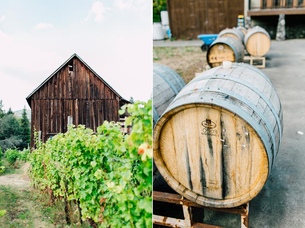 005-mount-baker-vineyards-grapes-food-bellingham-katheryn-moran-photography.jpg