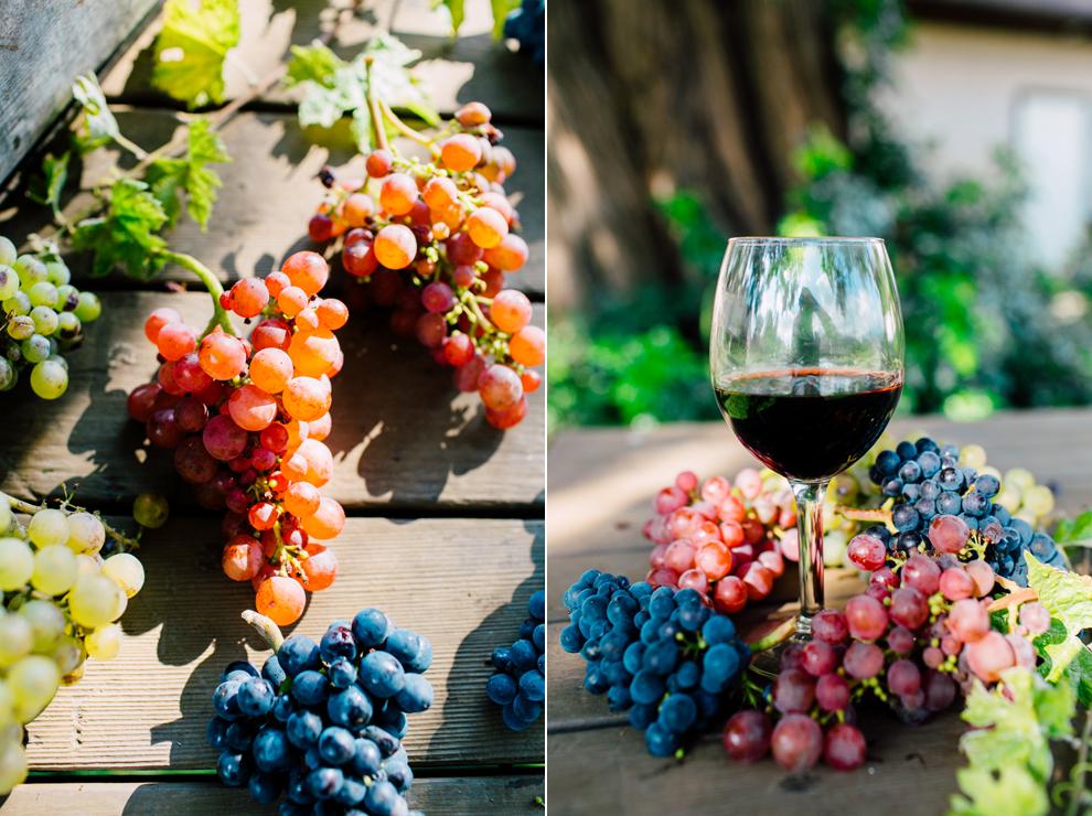 008-mount-baker-vineyards-grapes-food-bellingham-katheryn-moran-photography.jpg