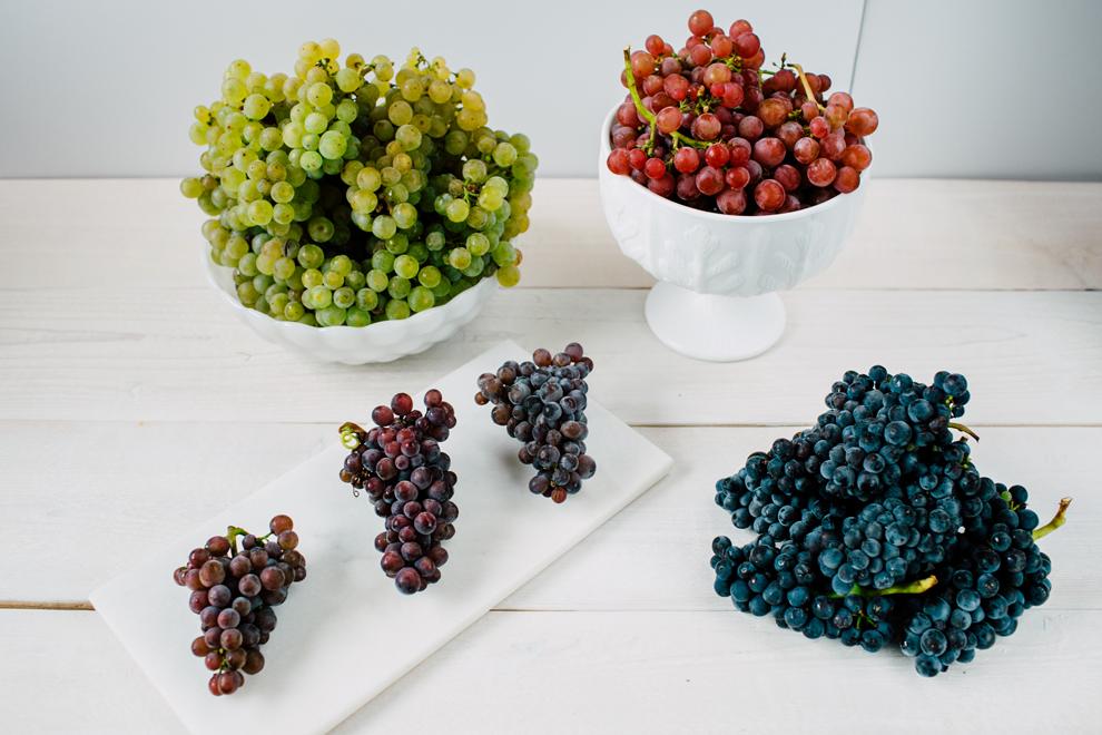 011-mount-baker-vineyards-grapes-food-bellingham-katheryn-moran-photography.jpg