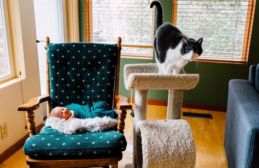 015-bellingham-newborn-lifestyle-photographer-katheryn-moran-hadley.jpg
