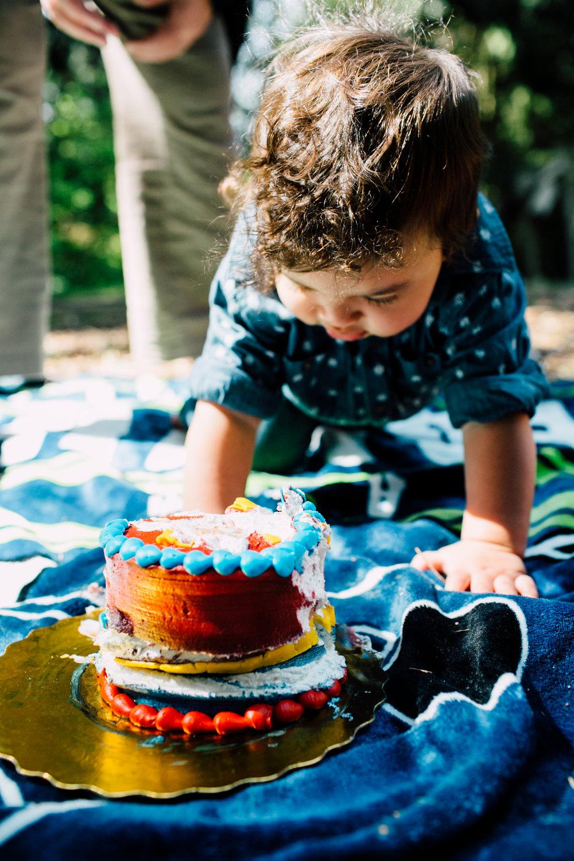 bellingham-spring-mini-cake-smash-photography-theo-38.jpg