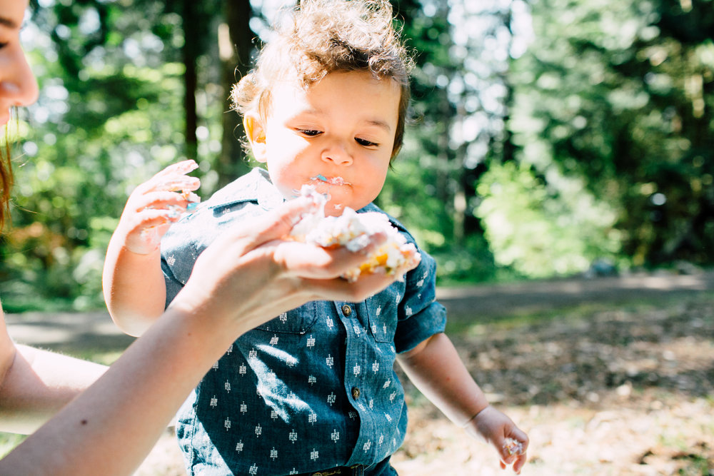 bellingham-spring-mini-cake-smash-photography-theo-43.jpg
