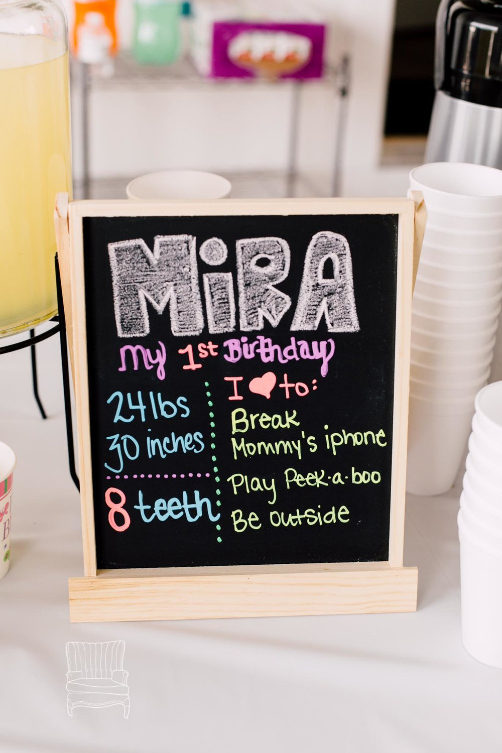 bellingham-one-year-birthday-party-photographer-mira-2.jpg