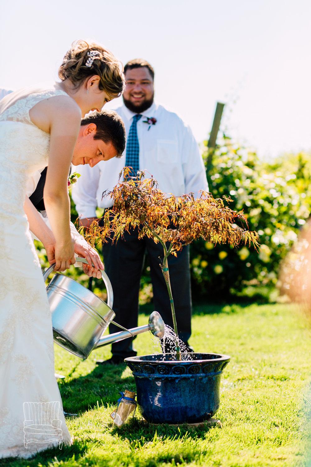 samson-winery-wedding-katheryn-moran-jillmike-2.jpg