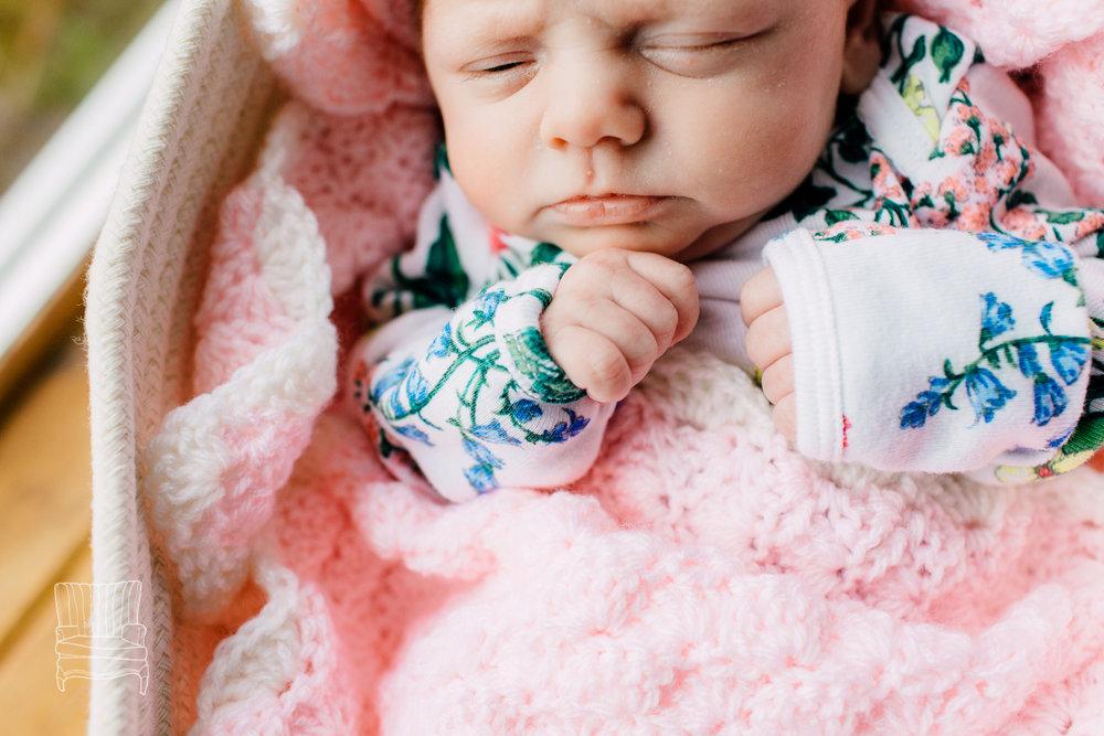 bellingham-newborn-photographer-katheryn-moran-babycora-3.jpg