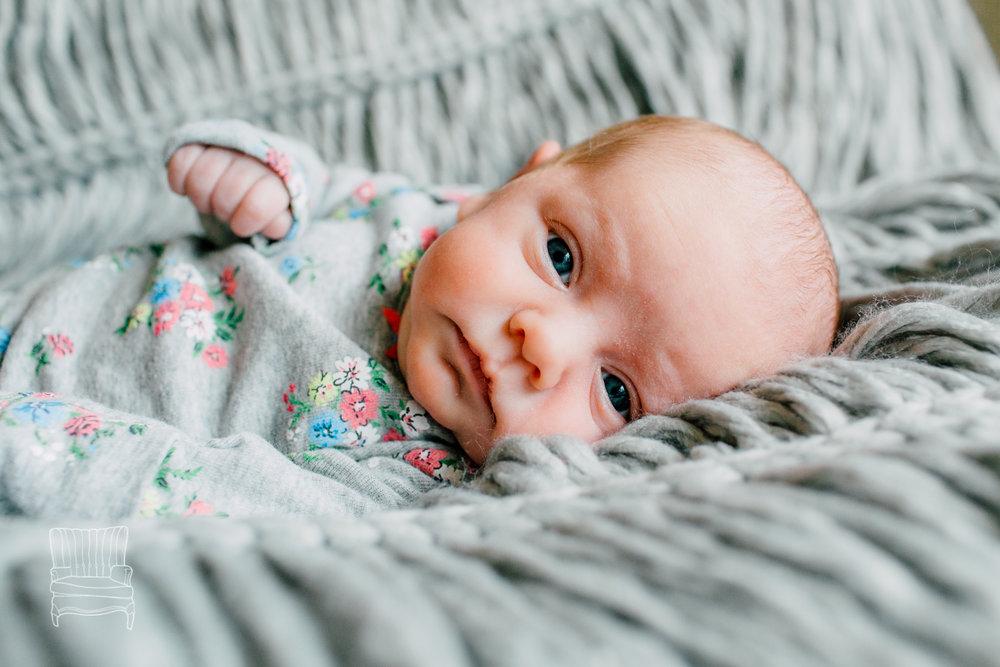 bellingham-newborn-photographer-katheryn-moran-babycora-13.jpg