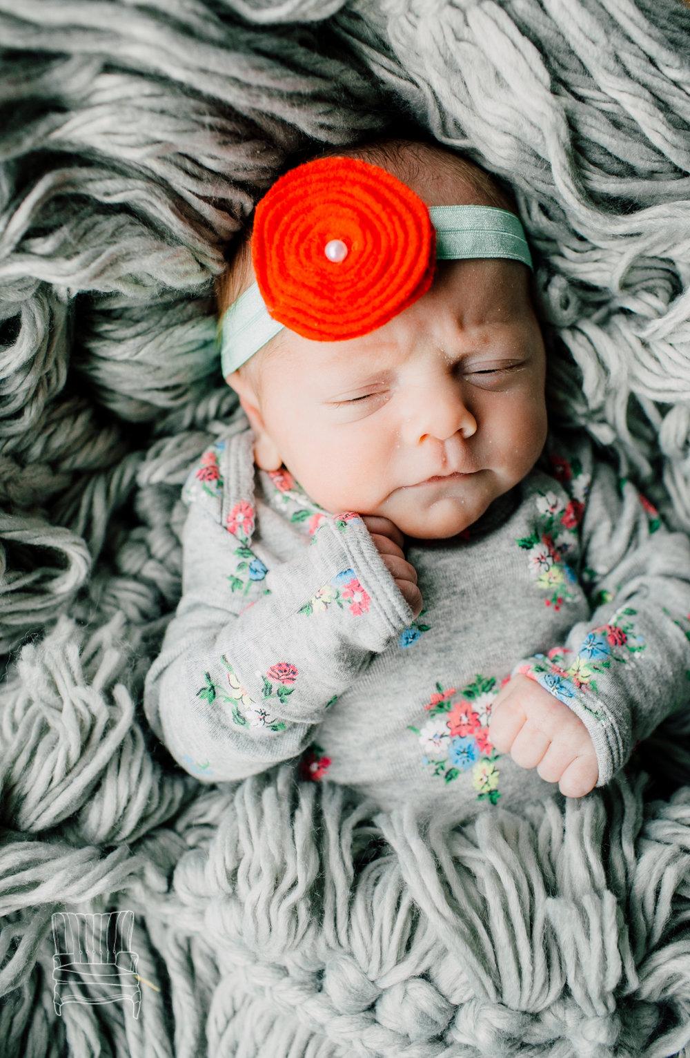 bellingham-newborn-photographer-katheryn-moran-babycora-12.jpg