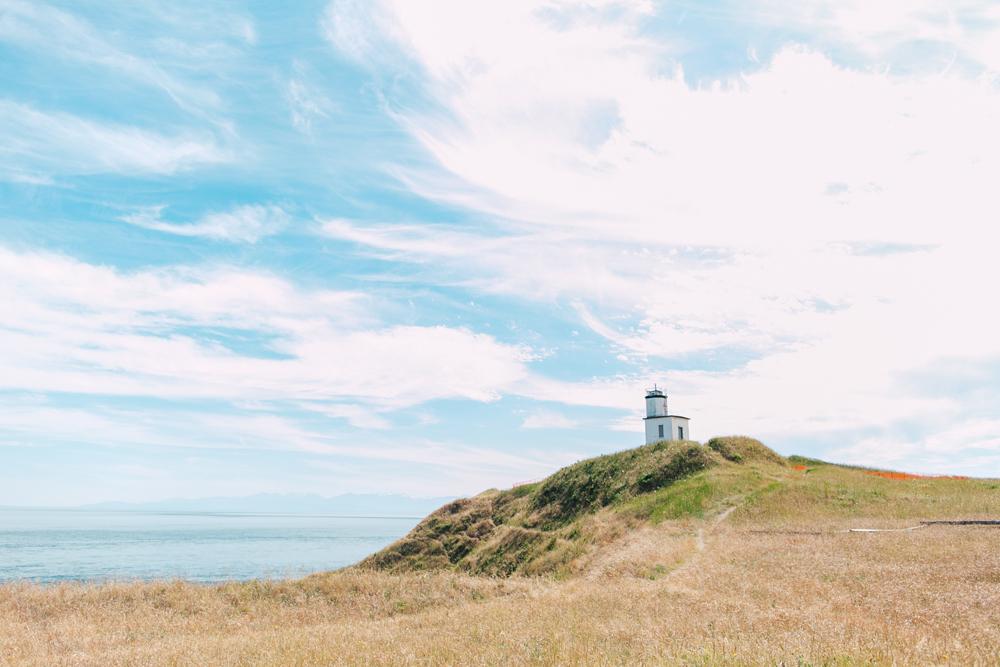 013-san-juan-island-photographer-katheryn-moran-anniversary-yellow-stripe-2017.jpg