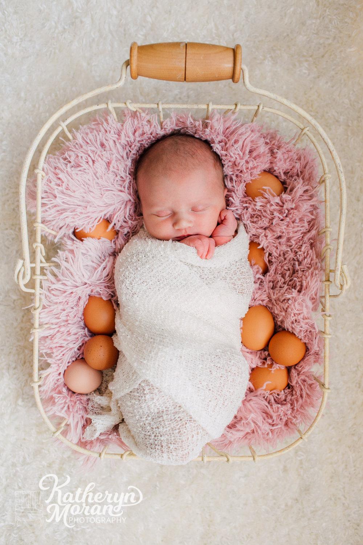 Bellingham Newborn Photographer Katheryn Moran Photography