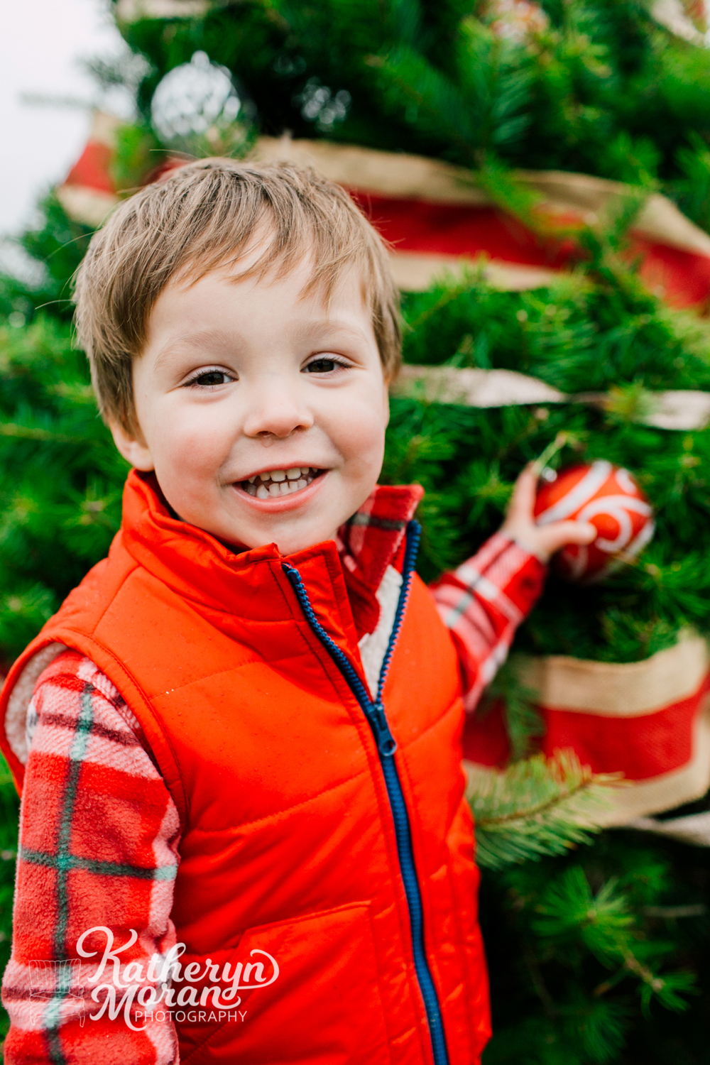 008-bellingham-holiday-mini-sessions-fullner-tree-farm-2017.jpg