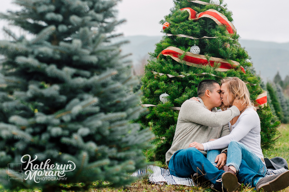 018-bellingham-holiday-mini-sessions-fullner-tree-farm-2017.jpg