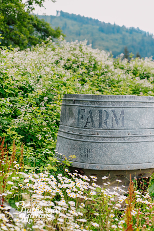 bellingham-marketing-photographer-katheryn-moran-alluvial-farms-spring-2018-6.jpg