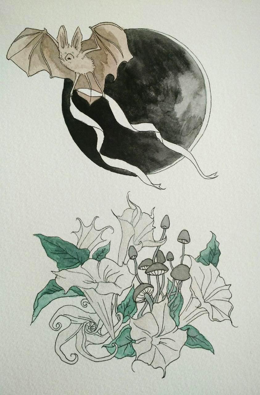 Datura Moon