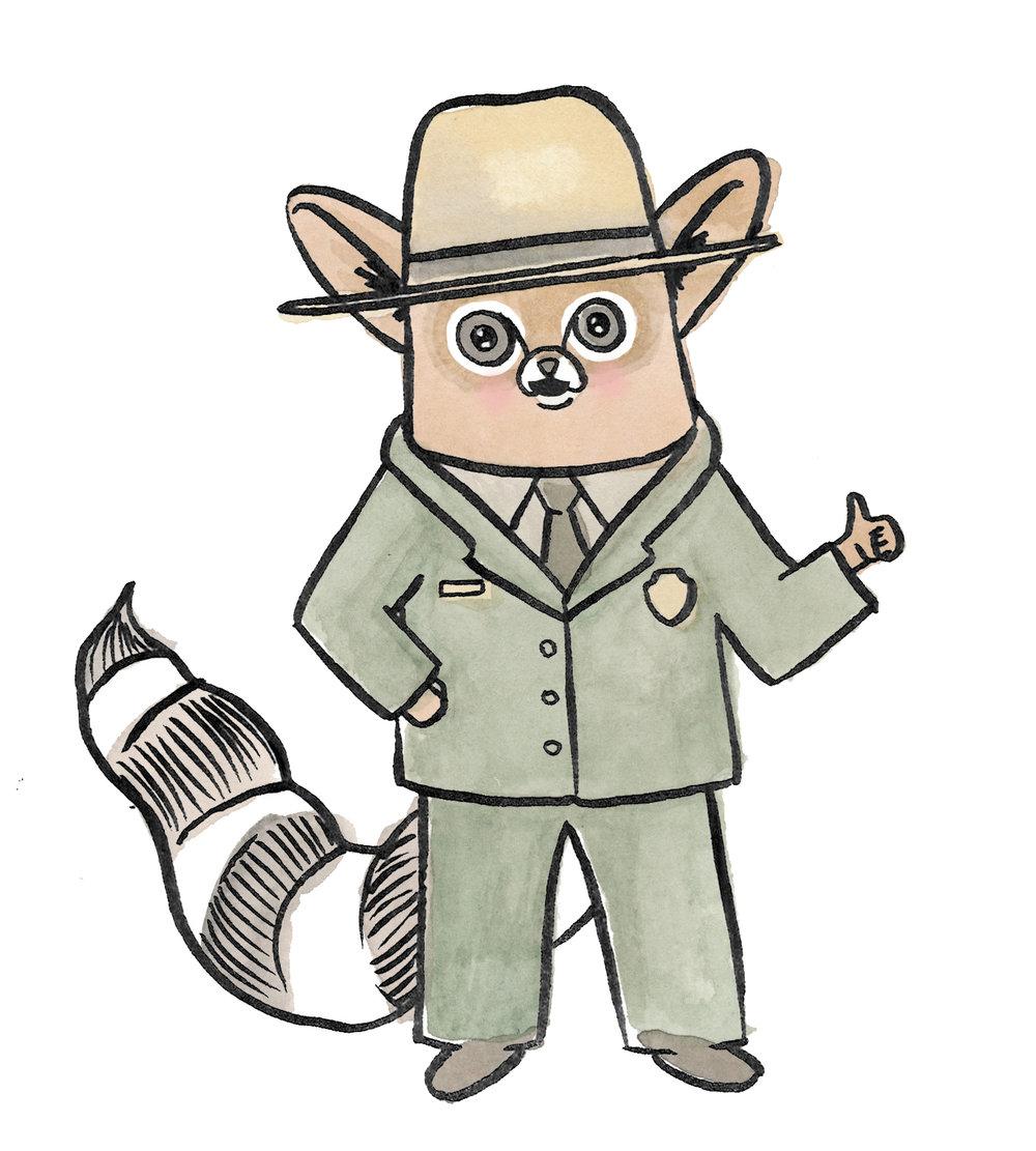 Randi Ringtail Ranger - The main character of the Bryce Canyon Junior Ranger workbook.