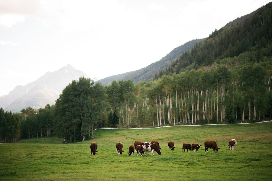 coloradowedding_Tlazy7ranchwedding_bytheimageisfound_0080.jpg