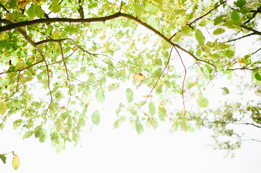 nashvillewedding_leipersforkwedding_farmwedding_bytheimageisfound_0068.jpg