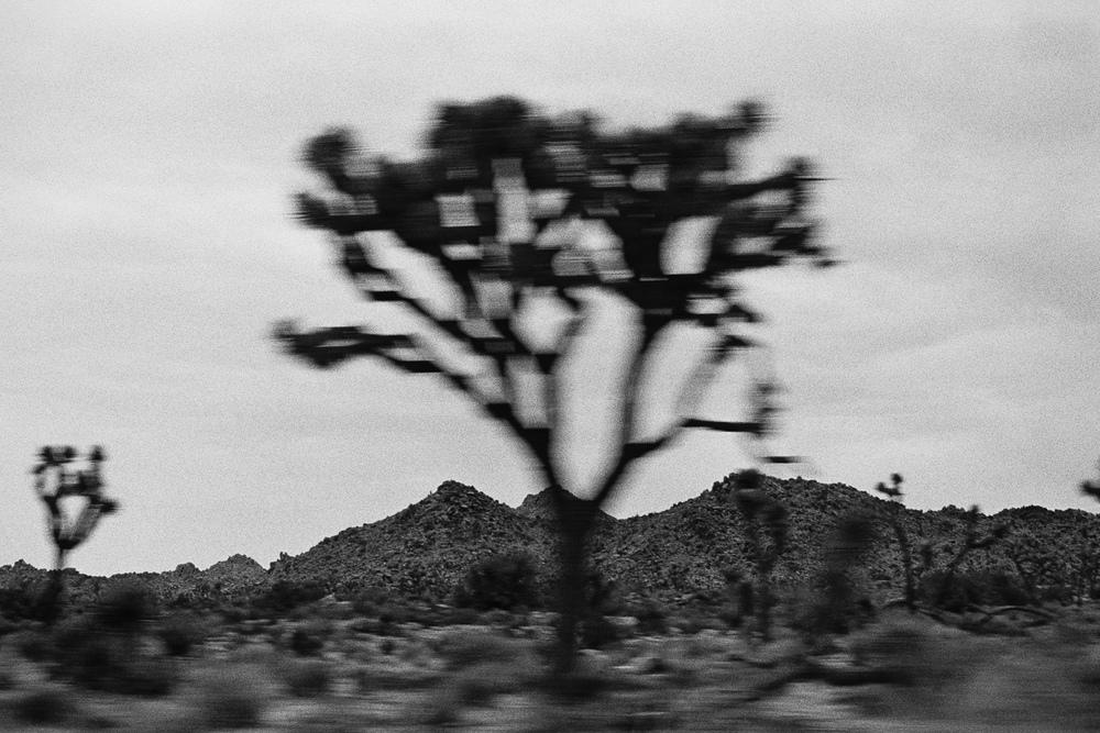 SouthwestRoadTrip2015_0013.jpg