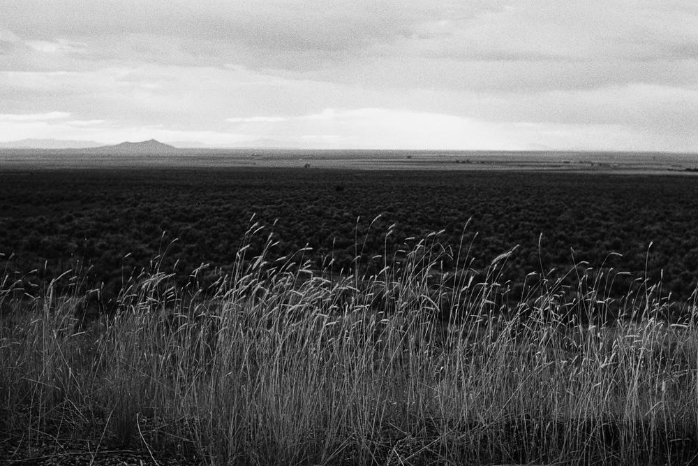 SouthwestRoadTrip2015_217.jpg