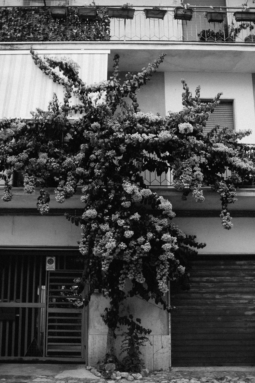 9.2018_Italy_0059.jpg