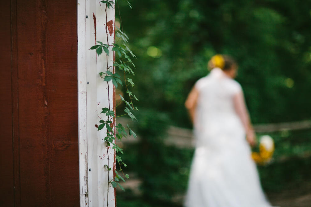 Elisabeth+Todd (2014-07-05)-Neal Dieker Photography-62.jpg