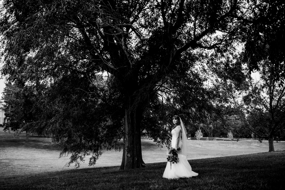 Wichita, Kansas Wedding-Neal Dieker-Summer Wedding-Wichita, Kansas Photographer-210.jpg