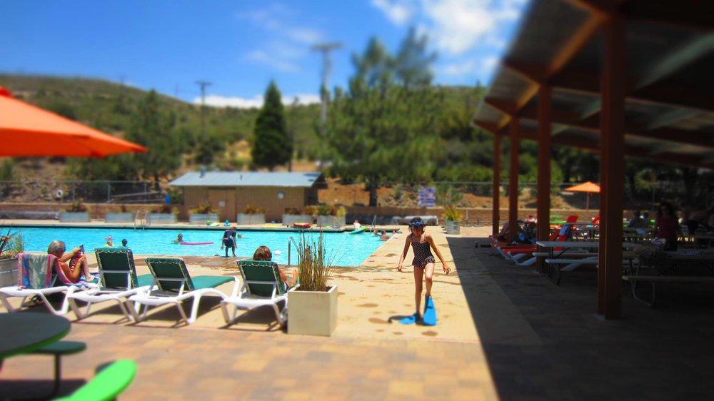 swimclub.jpg