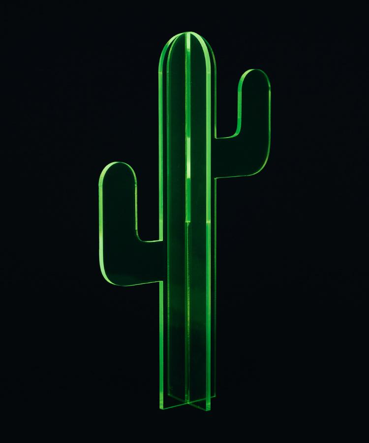 neon cactus.jpg