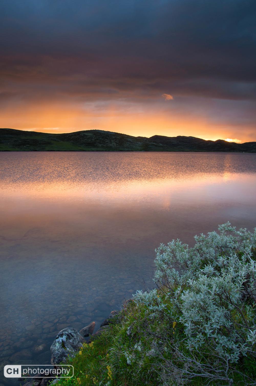 Hardangervidda Sunset