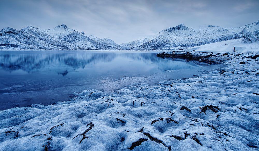 Kong Vinter by Felix Inden
