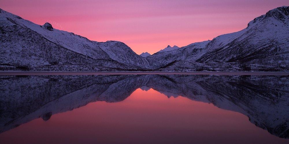 Arctic Candy by Felix Inden