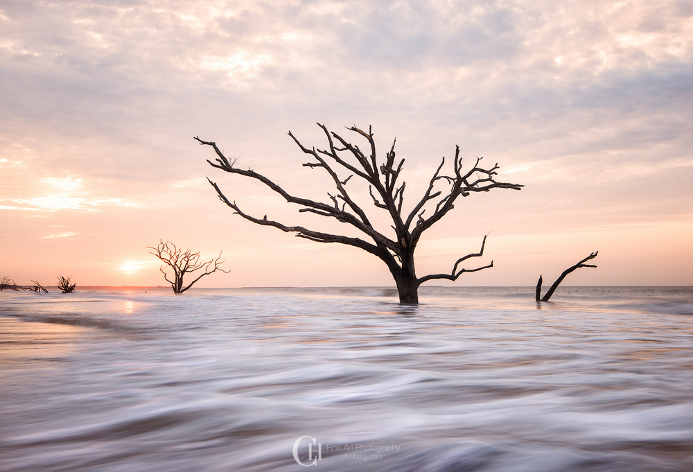 Knee deep in the water during a Botany Bay sunrise