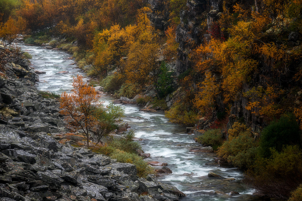 Spranget-fall-river.jpg