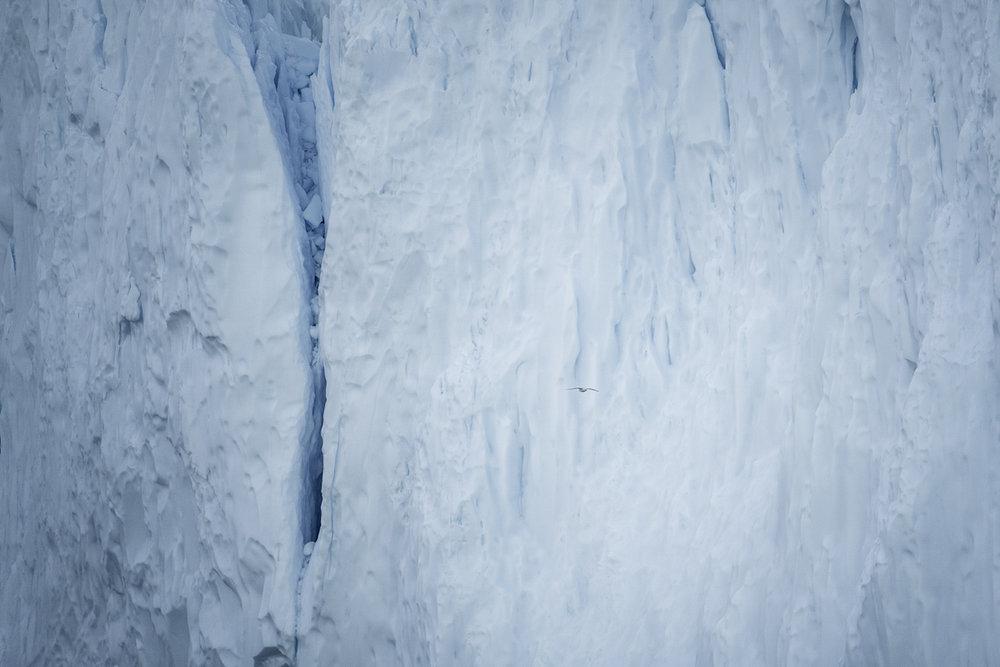 Abstract Greenland III