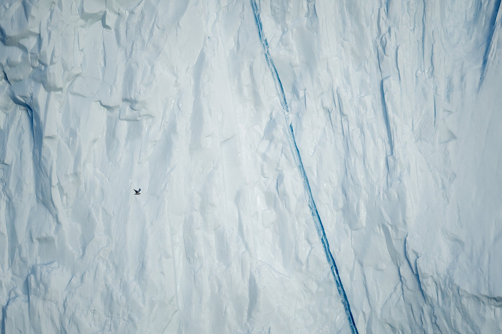 Abstract Greenland X