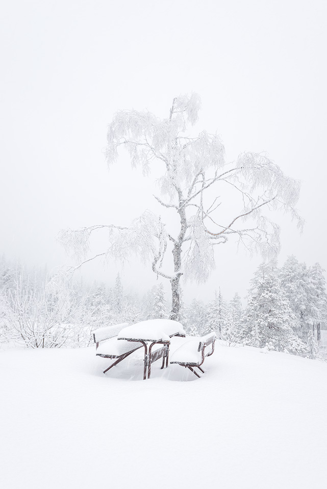 Knuten-winter-bench.jpg