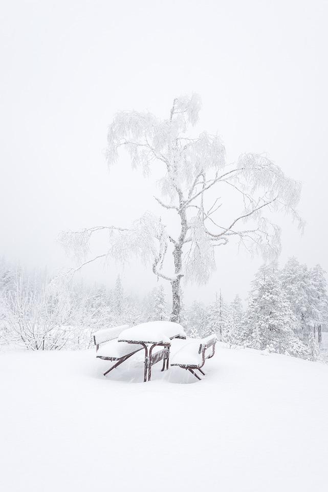 Knuten-winter-bench.jpg