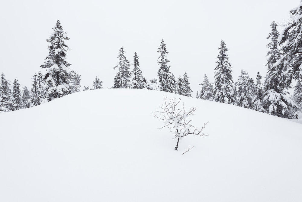 Blefjell-winter-snow.jpg