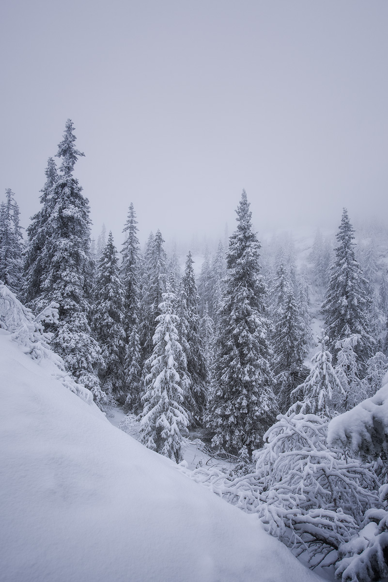 Kongsberg-winter-whiteout.jpg