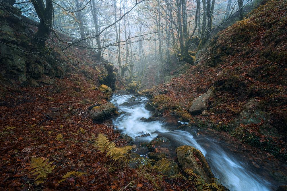 Belaustegui-River-Autumn.jpg