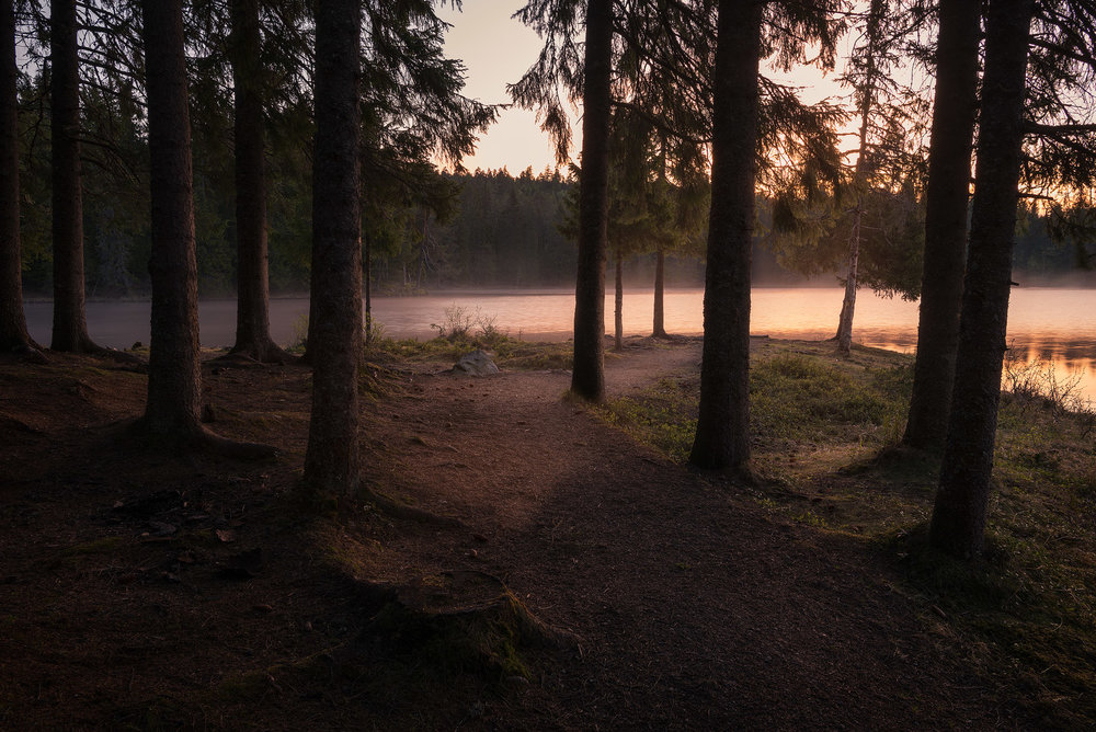 Trondheim-Bymarka-Sunrise-Baklidammen.jpg