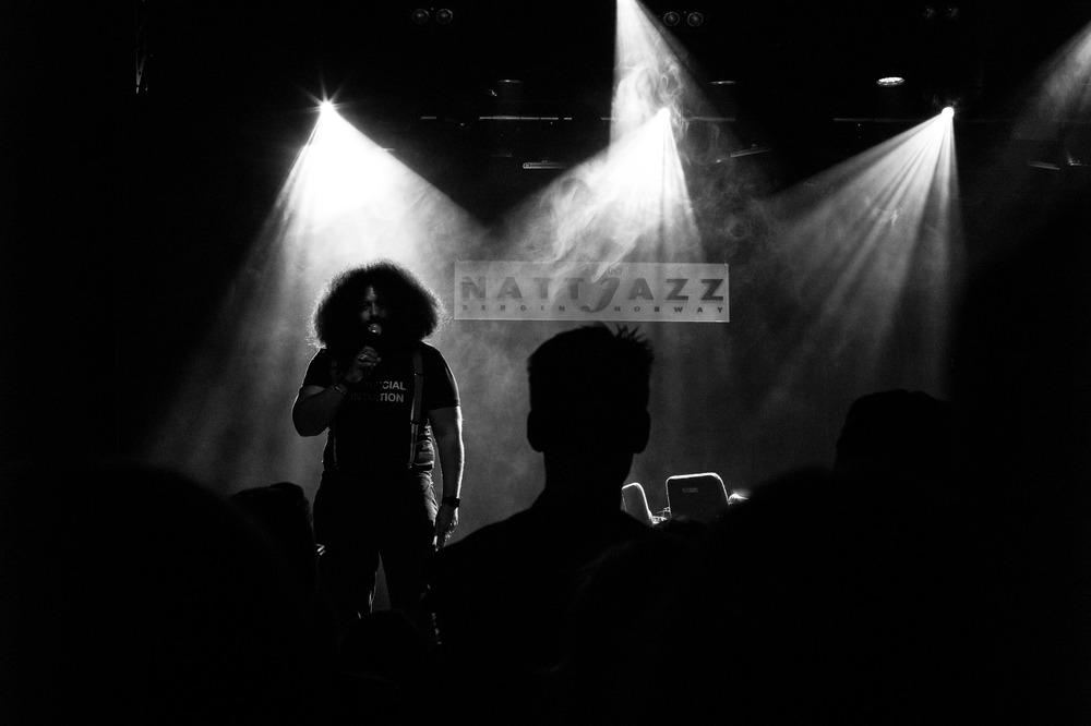 Reggie Watts at Nattjazz