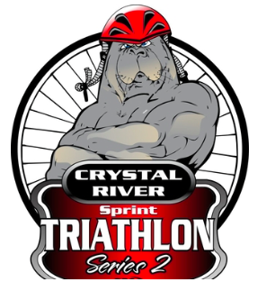 Crystal Rivet Tri Series #2